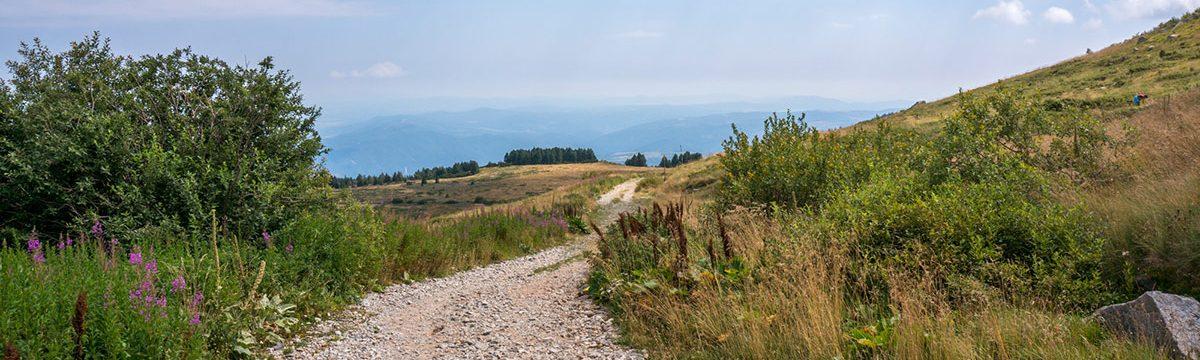 Vitosha National Park